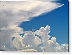 Skies-nature Acrylic Print by Sarah Loveland
