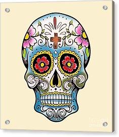 Skull 10 Acrylic Print by Mark Ashkenazi