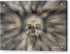 Skull - Fear And Trembling  Acrylic Print by Michal Boubin
