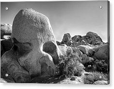 Skull Rock Acrylic Print by Peter Tellone