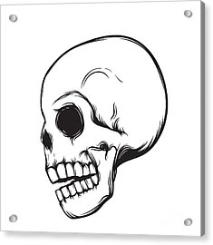 Skull, Side View, Isolated On White Acrylic Print