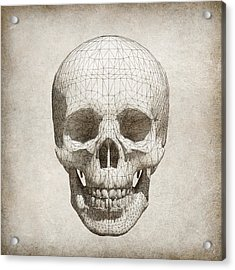 Skull Wireframe On Paper.  Acrylic Print by Thanes