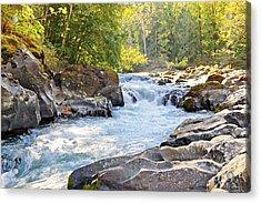 Skutz Falls At Cowichan River Provincial Park Acrylic Print