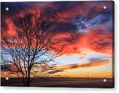Sky Ablaze Acrylic Print by Shirley Heier