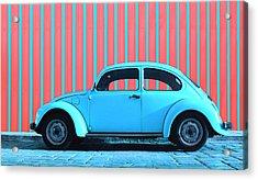 Sky Blue Bug Acrylic Print