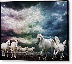 Sky Horses Acrylic Print