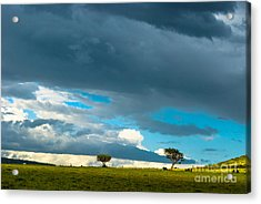 Sky Is The Limit Acrylic Print by Syed Aqueel