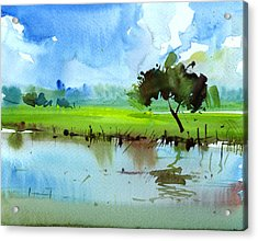 Sky N Farmland Acrylic Print by Anil Nene