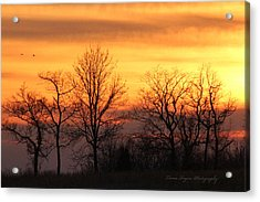 Sky On Fire Acrylic Print