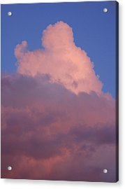 Acrylic Print featuring the photograph Sky Song 2 by Laurie Stewart