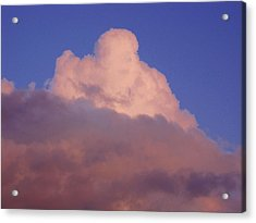 Acrylic Print featuring the photograph Sky Song 3 by Laurie Stewart
