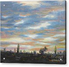 Sky Acrylic Print by Vesna Martinjak