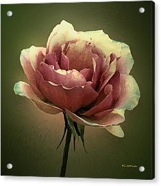 Skyblue Pink Acrylic Print by RC deWinter