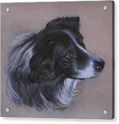 Acrylic Print featuring the painting Skye by Patricia Schneider Mitchell
