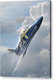 Skyhawk 2 Acrylic Print