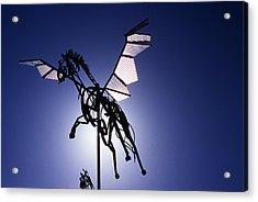 Skyhorse Acrylic Print by Bernard  Barcos