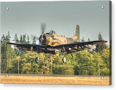 Skyraider Acrylic Print