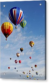 Acrylic Print featuring the photograph Skyward Bound by Gina Savage