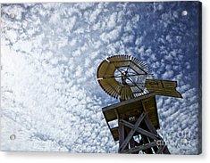 Skyward Acrylic Print by Erika Weber