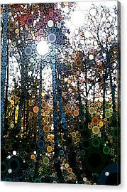 Skyway Forest At Dawn Acrylic Print by Linda Bailey