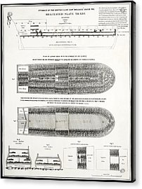 Slave Ship Middle Passage Stowage Diagram  1788 Acrylic Print