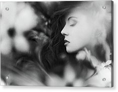 Sleeping Cherry Acrylic Print