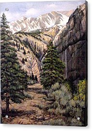 Acrylic Print featuring the painting Sleeping Faces In The Rock by Donna Tucker