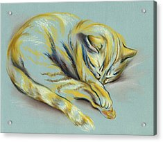 Acrylic Print featuring the pastel Sleeping Tabby Kitten by MM Anderson