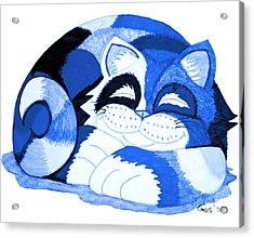 Sleepy Blue Cat Acrylic Print by Nick Gustafson