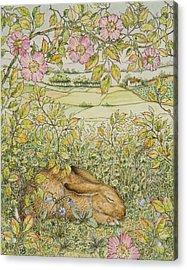 Sleepy Bunny Acrylic Print