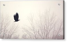 Slicing Through The Fog Acrylic Print by Melanie Lankford Photography