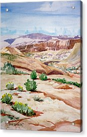 Slickrock Acrylic Print by John Ressler