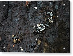 Acrylic Print featuring the photograph Slippery Rock  by Allen Carroll