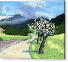 Slovenia. Kamnik. Acrylic Print by Lelia Sorokina