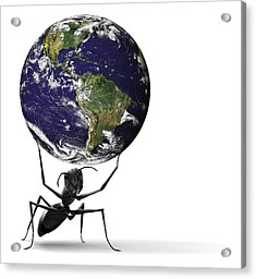 Small Ant Lifting Heavy Blue Earth Acrylic Print