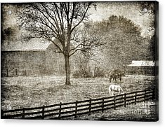 Small Farm In West Virginia Acrylic Print by Dan Friend