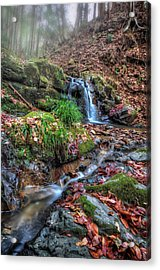 Acrylic Print featuring the photograph Small Fog Waterfall by John Swartz