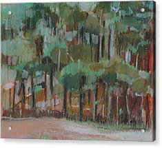 Small Green Forest Acrylic Print by Alicja Coe