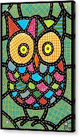 Small Quilted Owl Acrylic Print by Jim Harris
