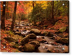 Acrylic Print featuring the photograph Small Stream by Geraldine DeBoer