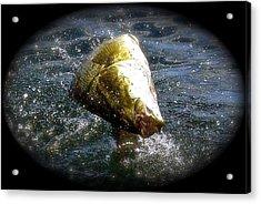 Smallmouth Bass Acrylic Print by Richard Majeau