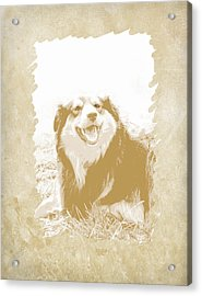 Smile II Acrylic Print by Ann Powell