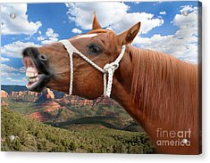 Smile When You Say That Acrylic Print