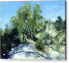 Smoke Tree Path Acrylic Print by Stacy Vosberg