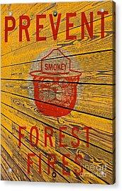 Smokey Acrylic Print by David Lawson