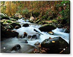 Smokey Mountain Creek Acrylic Print by Donald Fink