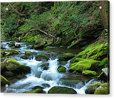 Smokey Mountain Spring Acrylic Print by Don F  Bradford