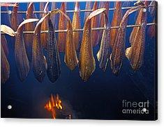 Smoking Fish Acrylic Print