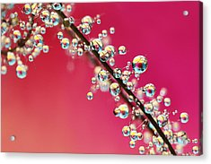 Acrylic Print featuring the photograph Smoking Pink Drops II by Sharon Johnstone