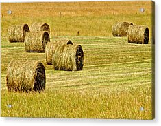 Smoky Mountain Hay Acrylic Print
